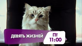 """""""Девять жизней"""" - семейная комедия на НТК!"""