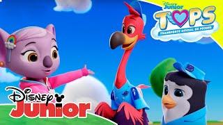 Download TOPS Transporte Oficial de Peques: Momentos Mágicos - La siesta de Chase | Disney Junior Oficial