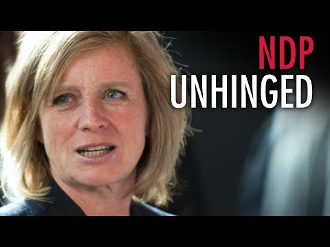 """""""Paranoid"""" Notley says United Conservatives will bully gay youth"""