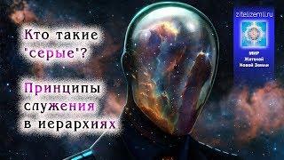 3. Кто такие серые? Открытие памяти души. Чего боится Иерархия?