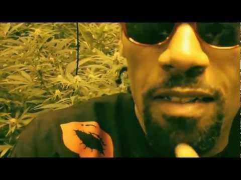 Redman ft. Ready Roc - Sourdeezal (Official Music Video)