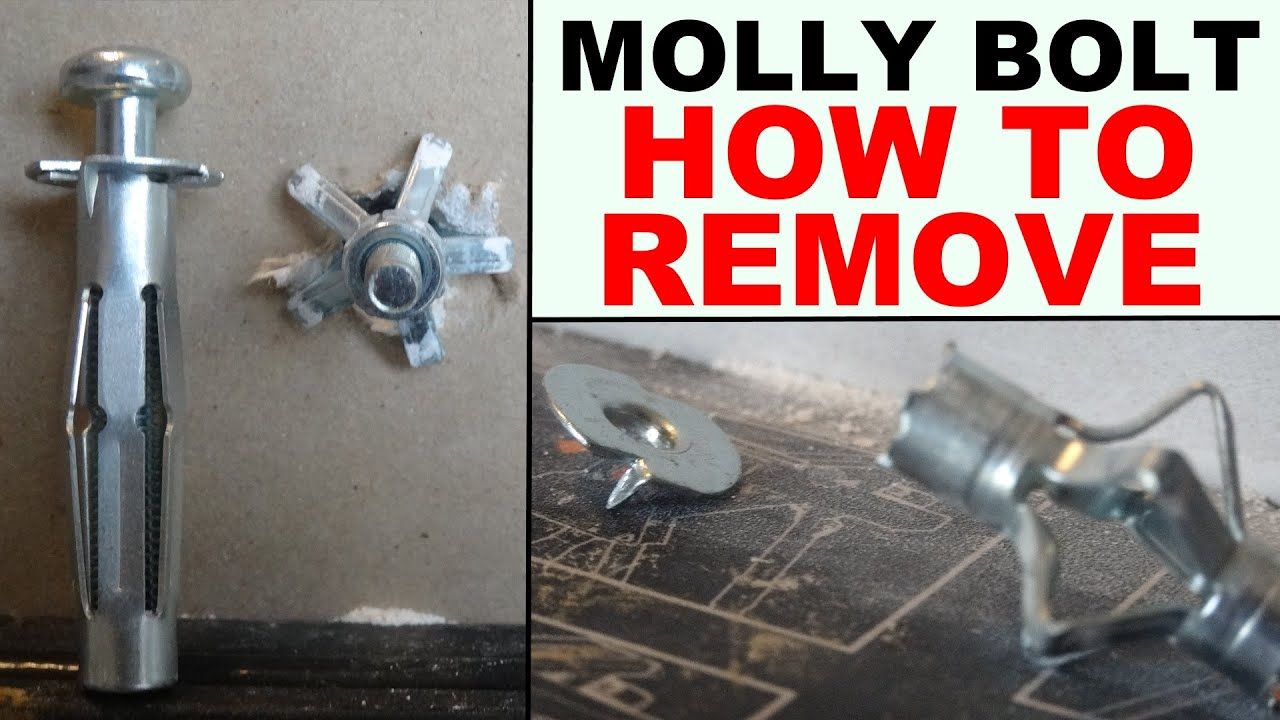 how to remove hollow wall anchors properly (drywall ...