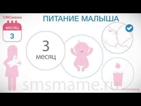 Ребенок 3 месяца - виды улыбок и смеха ребенка, питание, прикорм, развитие