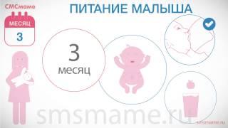 Новорожденный 3 месяца - питание ребенка, нужен ли прикорм, развитие ребенка в 3 месяца