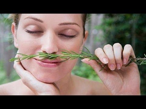 Вся правда о розмарине: полезные свойства розмарина ~ лечение травами