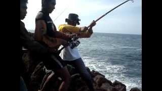 Wedi Ombo Rock Fishing 1
