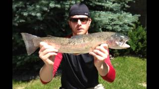 Fly Fishing Southern Alberta Waters