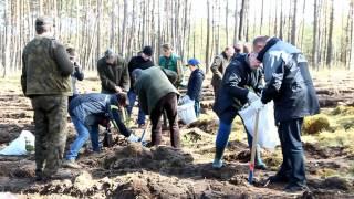 Sadzenie lasu w ramach Ogólnopolskiego Święta Lasu. Leśnictwo Spore