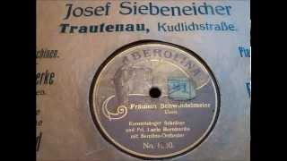 Lucie Bernardo, Konzertsänger Schröter: Fräulein Schwindelmeier - Lustiger berliner Vortrag um 1924