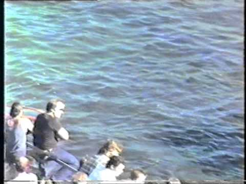 Speedboat Racing April 1986 Albert Park Lake Part 2
