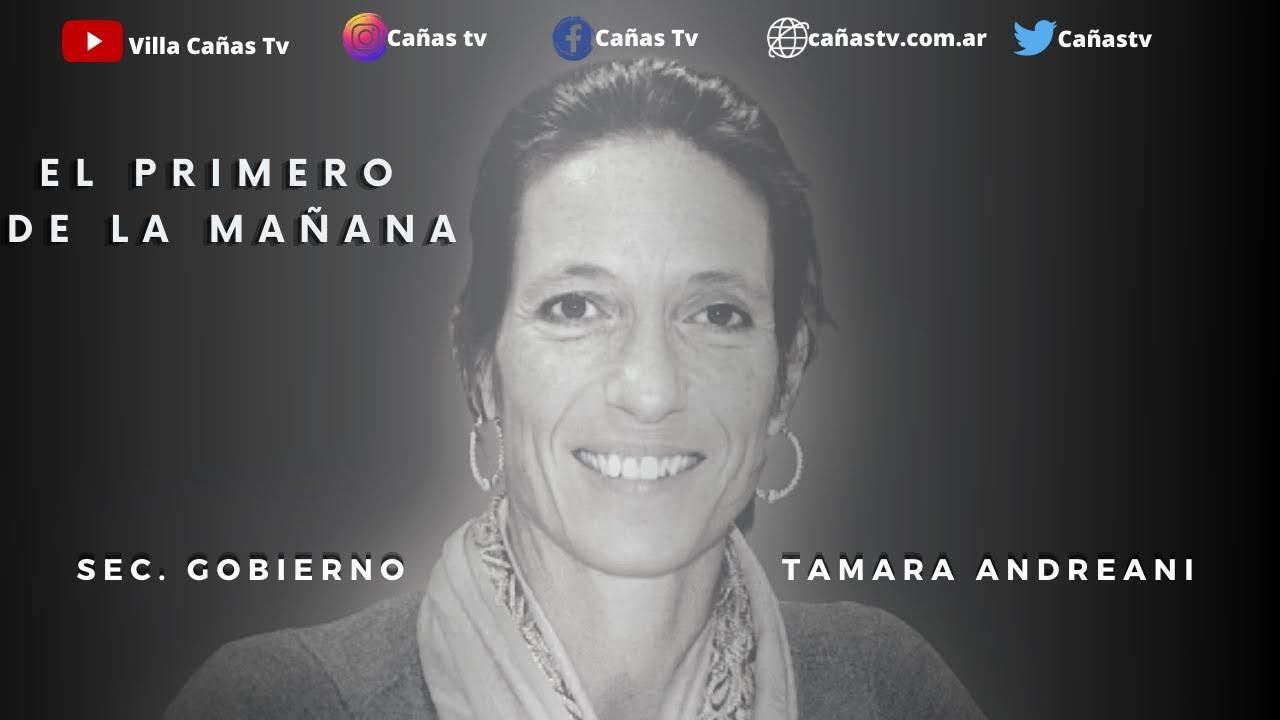 TAMARA ANDREANI   TIEMPOS DE PANDEMIA