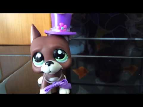 LPS MV Wiggle (feat. Snoop Dogg)