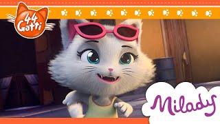 44 Gatti - serie TV | Ecco Milady!
