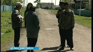 В Башкортостане в течение двух дней волки напали на трех человек