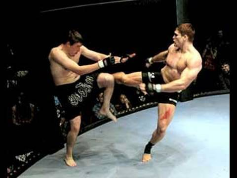 todd duffee ufctodd duffee ufc, todd duffee record, todd duffee next fight, todd duffee vs frank mir, todd duffee height, todd duffee twitter, todd duffee knockout, todd duffee movies, todd duffee workout, todd duffee news, todd duffee tattoo, todd duffee training, todd duffee instagram, todd duffee vs mir, todd duffee wife, todd duffee anthony hamilton, todd duffee fighter, todd duffee record knockout, todd duffee highlights, todd duffee illness