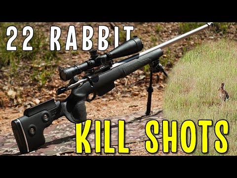 22 Rabbit Hunting Kill Shots With long Range Hunting Rifles
