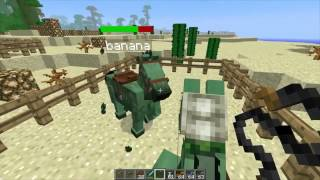 How To Make A Skeleton Horse In MineCraft