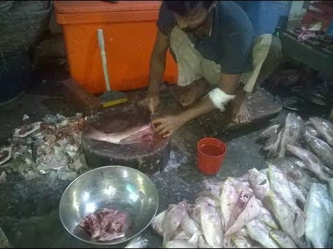 Best Fish Identification- Pakistani & Indian Food Street.by Hashim Jah  Temuri.