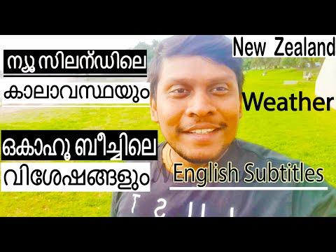 New Zealand Weather Info |Okahu Beach|ന്യൂ സിലന്ഡിലെ കാലാവസ്ഥ| Mallu In New Zealand | Malayalam Vlog
