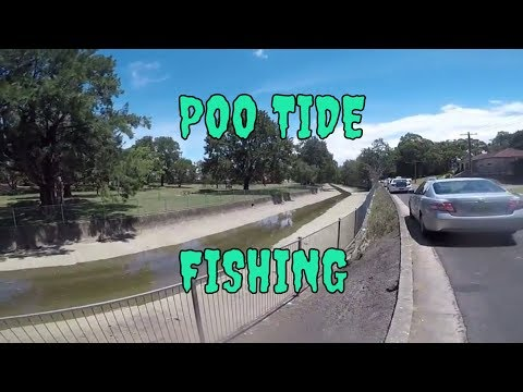 Urban fishing in Sydney raw sewerage drains for Bream and Flathead.