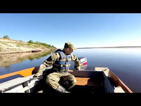 Рыбалка летом на севере. р Печора. Микроджиг. Жор окуня.