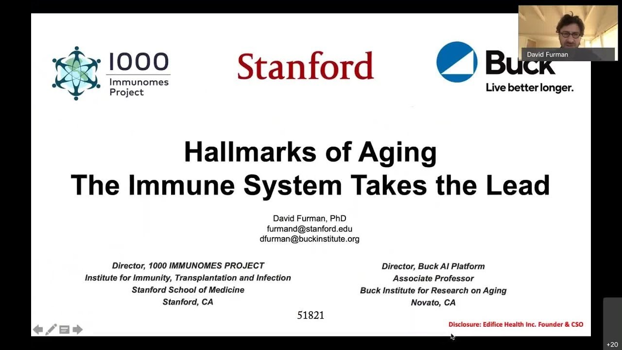 Hallmarks of Aging: The Immune System Takes the Lead