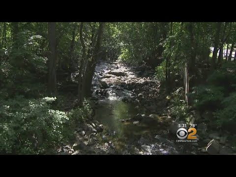 NJ Swimming Hole Safety Concerns