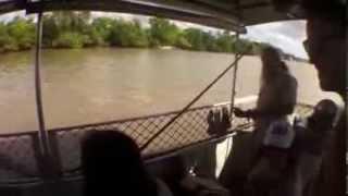 Un crocodile attaque le bateau de touristes en Australie.