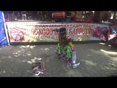 Perang Celeng Kesurupan (ndadi) - Turonggo Bayu Sapputro part 1