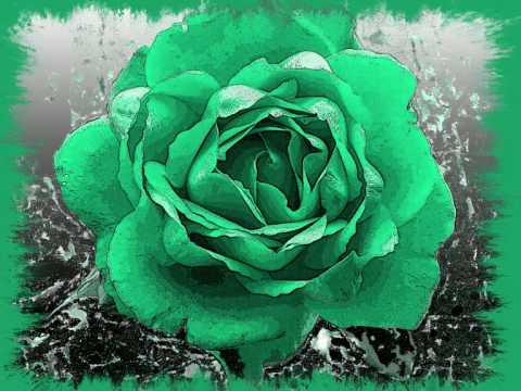 die rose.wmv