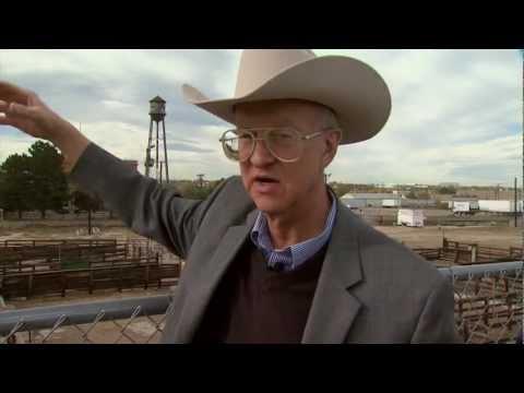 I Am Angus: History of the Denver Union Stockyards