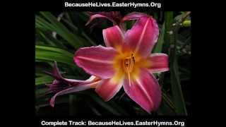 because he lives accompaniment tracks downloads.flv