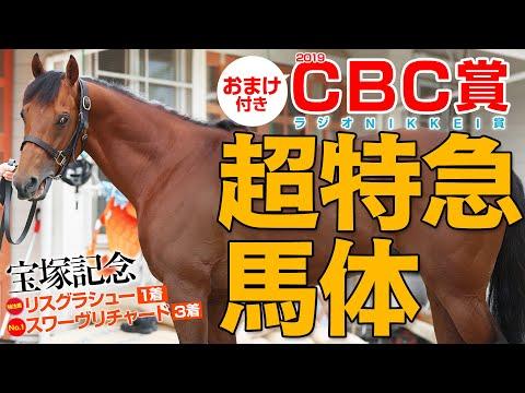 CBC賞   結果・払い戻し | 競馬予想ウマークス