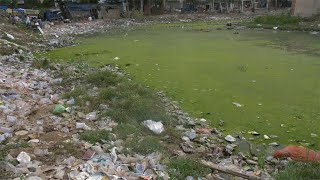Moving shot of a smelly dumping ground with algae and domestic waste in India