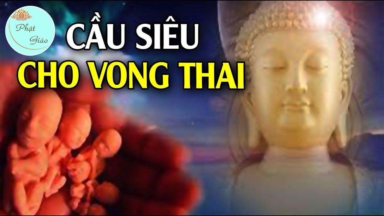 Cách Hóa Giải ÁC NGHIỆP, Sám Hối Khi Trót PHÁ THAI – Cầu Siêu Cho Vong Linh Thai Nhi – Phật Giáo VN
