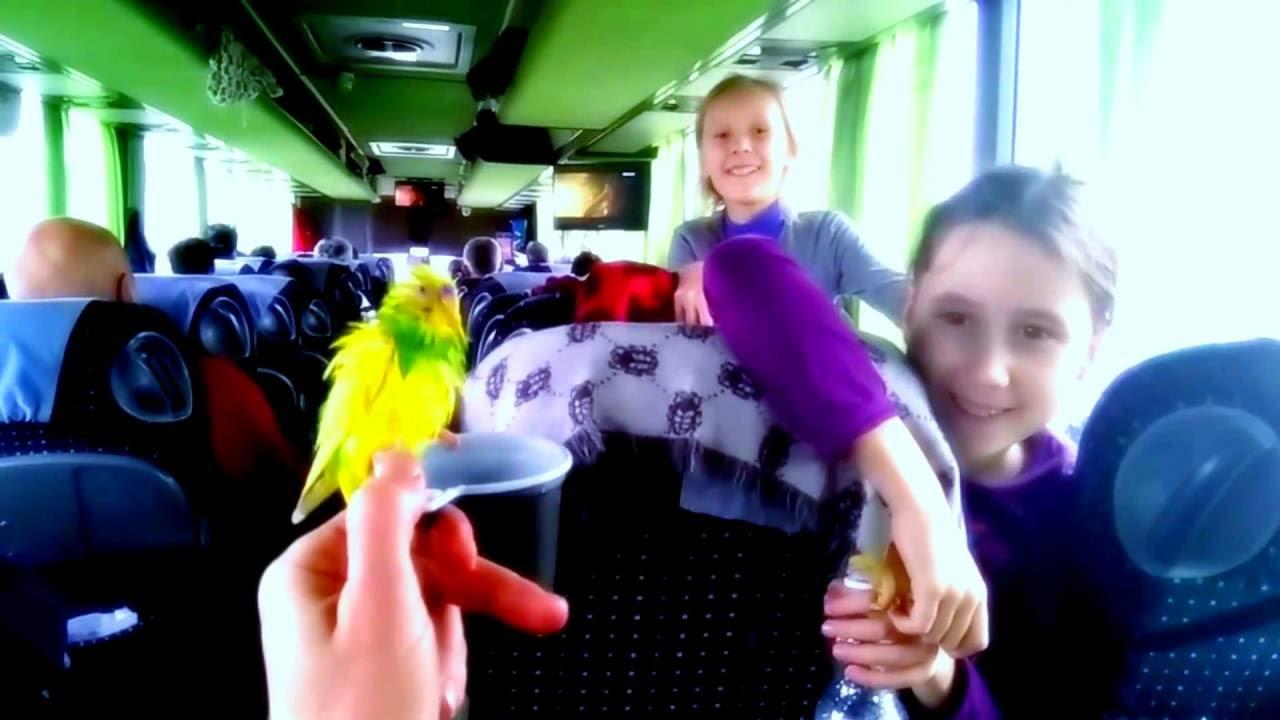 Керчь: операции «Должник» и «Автобус» - YouTube