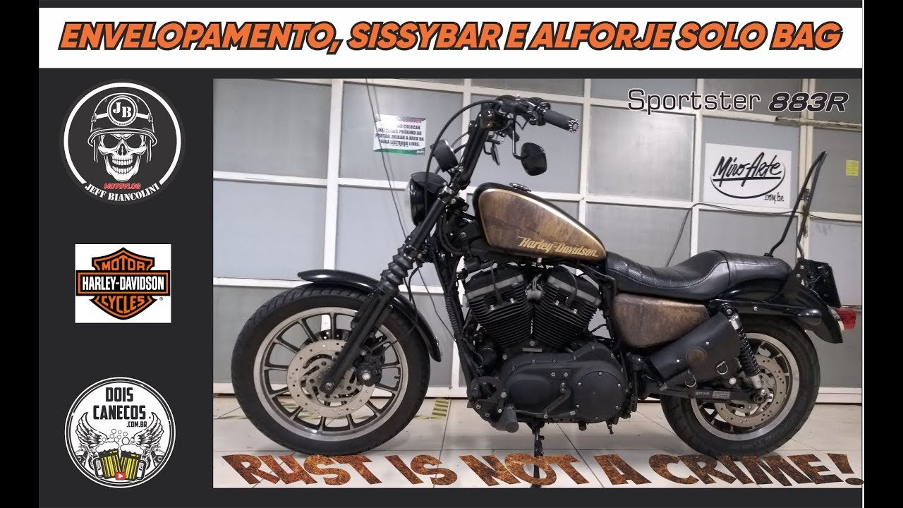 Sissy Bar mit Gepäckträger abnehmbar für Harley Sportster 883 94-03 chrom