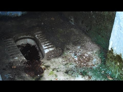 There is no toilet in Primary School Raghunathpur, Uttar Pradesh— Video Volunteer Gayatri reports