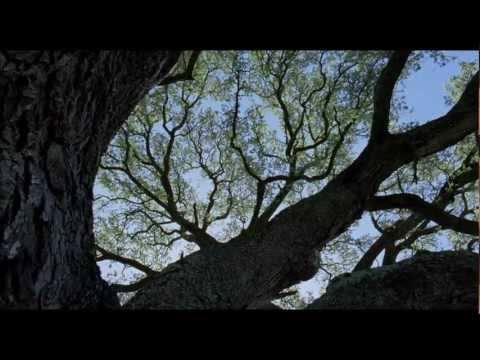 "Funeral Canticle (From ""The Tree of Life"")"