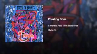 Pointing Bone