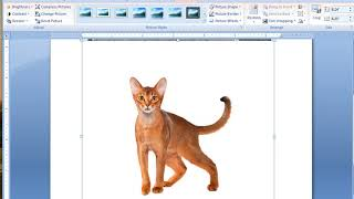 How to insert image to another image on Microsoft word 2007.