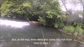 Luxembourg Fishing: End of Trout Season' 2014