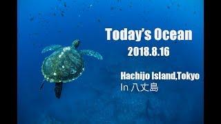 「今日の海」Vol.1 2018年8月16日 in 東京都八丈島 (Today's Island 16.8.2018 Tokyo,Hachijo Island)