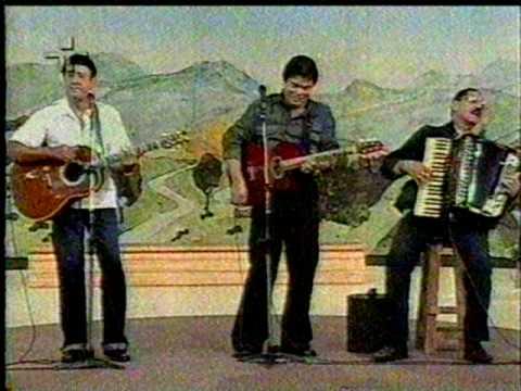 musica as andorinhas voltaram do trio parada dura