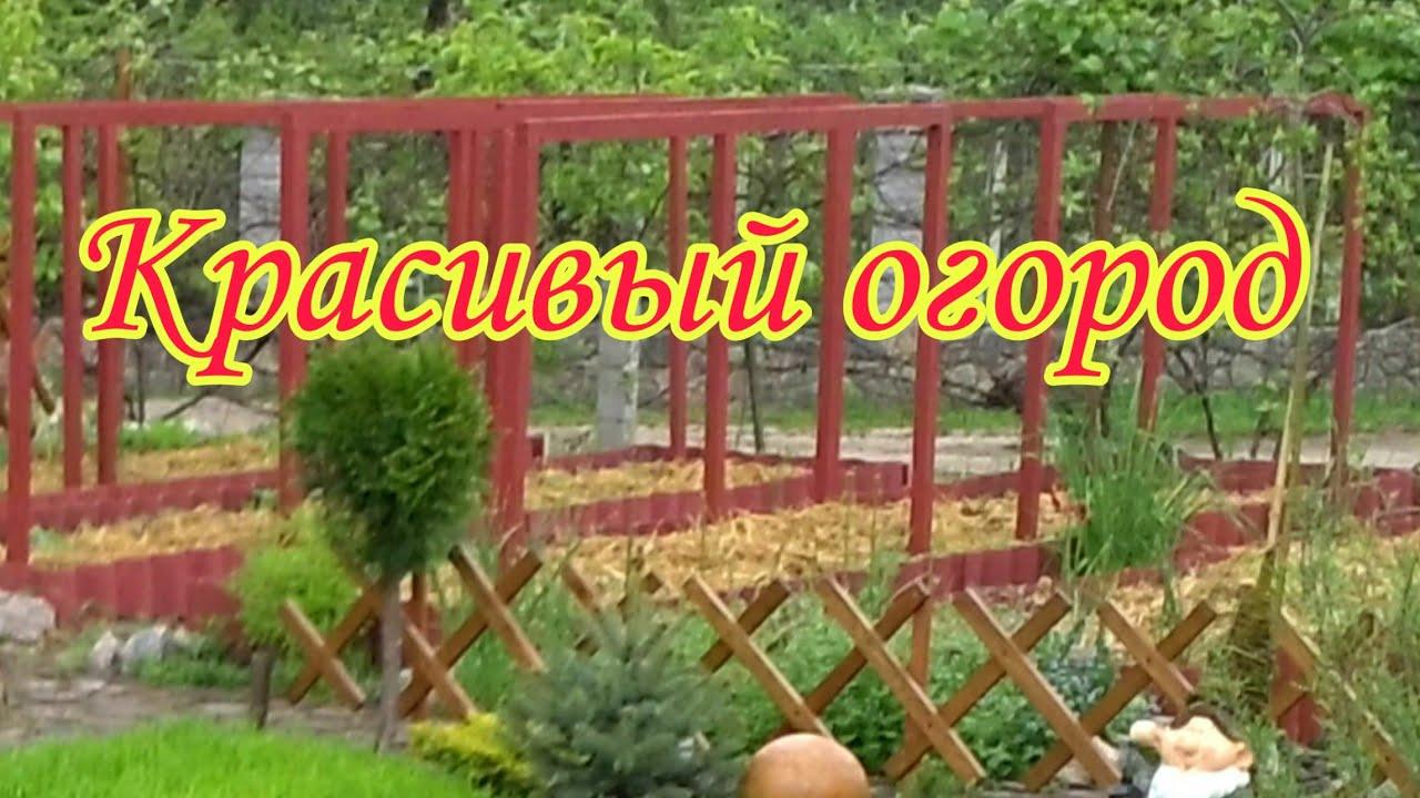 Красивый малоуходный огород.Делаем правильные грядки.Наслаждаемся плодами своего труда.Своими руками