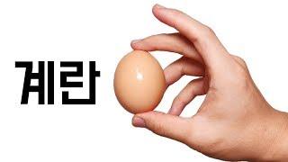 '기적의 계란요리 레시피' #13분이_아깝지_않을_최고의_영상