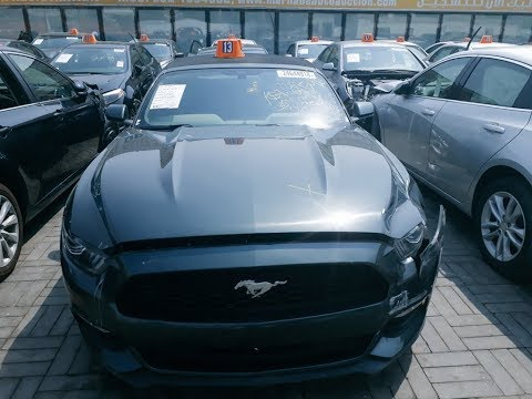 Авто Аукцион в Дубай.  Авторынок в ОАЭ.