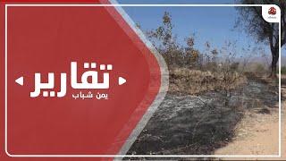 عبث حوثي يطال مزارع المواطنين شمال الضالع