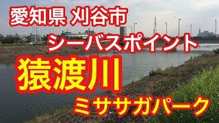 猿渡川 ミササガパーク 愛知県 刈谷市 シーバスポイント