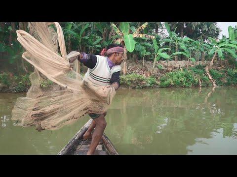 Net Fishing  Catching Fish By Cast Net  Fishing With Beautiful Nature (Part-500)